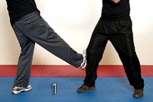 Image 1 - Leg Obstruction