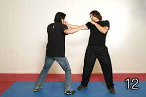 Image 12 - Wing Chun in JKD