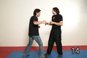 Image 14 - Wing Chun in JKD