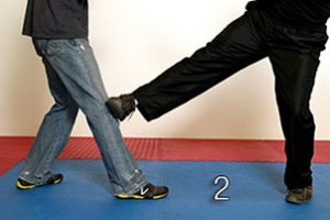 Image 2 - Leg Obstruction