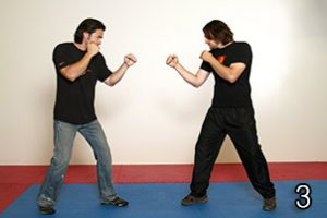 Image 3 - Wing Chun in JKD