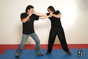 Image 5 - Wing Chun in JKD