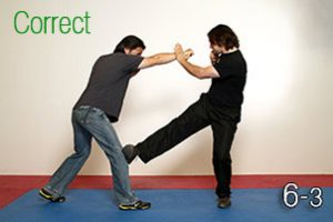 Image 6.3 - Leg Obstruction