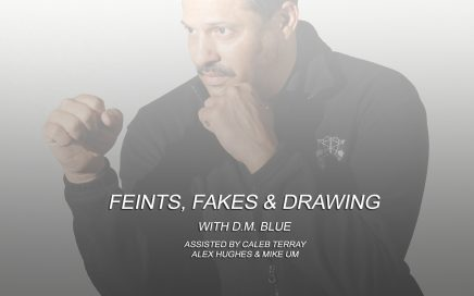 Feints, Fakes, and Attack By Drawing