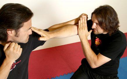 Wing Chun in JKD